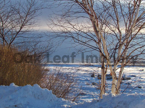 Product picture Sunrise On The St. Lawrence - Royalty Free